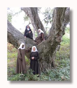 Oak-Tree-Four-Sisters-2-Resized-PS